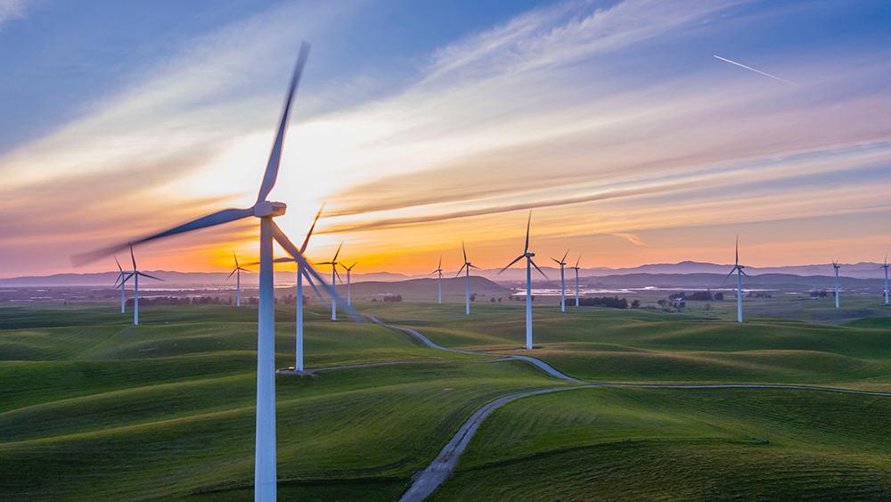 An image of a field of wind turbines at sunset